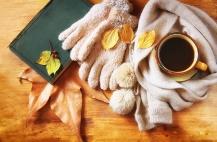 Coffee_Autumn_Foliage_467852