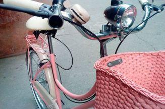 bike 19